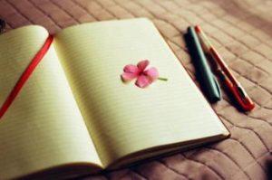 Buku Harian Istri dan Suami