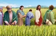 "Hari Minggu Pra Paskah IV, ""Turut Serta Dalam Karya Keselamatan Allah"""