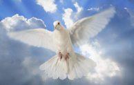 """Hari Biasa, Minggu VI Paskah, """"Roh memimpin ke seluruh kebenaran"""""""