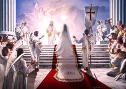 Renungan Harian Katolik Kamis, 26 November 2020