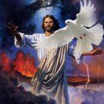 Renungan Harian Katolik Minggu, 23 Mei 2021