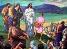 Renungan Harian Katolik Minggu, 25 Juli 2021